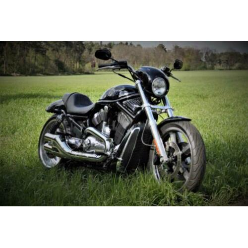 Harley Davidson VRSCD NIGHT ROD V-ROD 2007